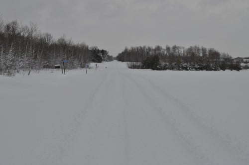 The Road to Emma's Place. See that nice, clear path? Me neither, and it was less clear when I traversed it last night!