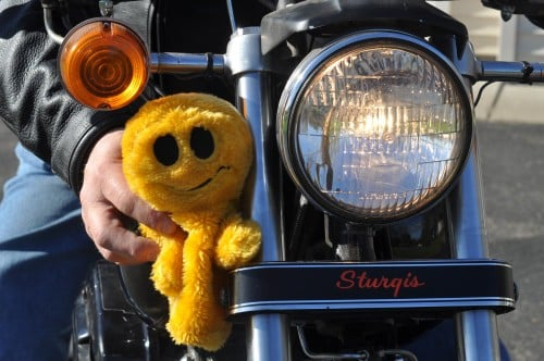 Mr. Happy hanging out on the 1981 Sturgis, shovel.