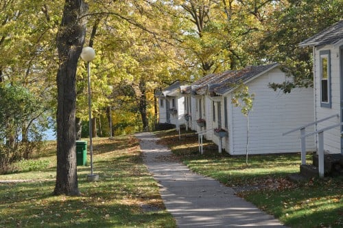 Cabins along the ridge, under the umbrella of golden leaves.