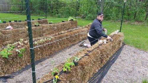 Biker Chef Strawbale Gardens