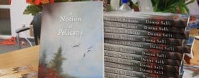 A Notion of Pelicans by Donna Salli, book review